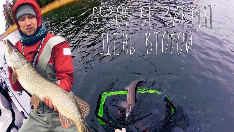 Щуки едят свиней / Осенняя рыбалка