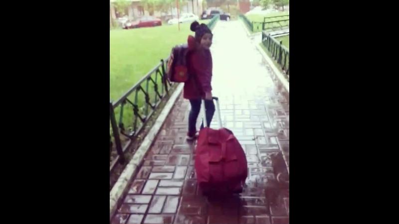Дожили, мис КЭТ катит свой чемодан сама и несёт свои игрульки в рюкзаке!))Летим домой, до скорой встречи наша Москва)!!Было крут