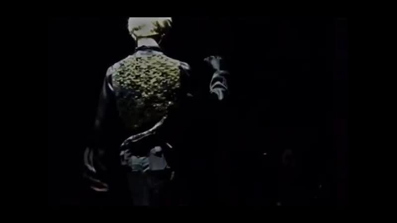 Park Ji Min | Jimin | BTS vine | kpop vine