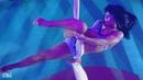 Circus Tigers Aerialist   Цирк Тигры Воздушная гимнастка на полотнах
