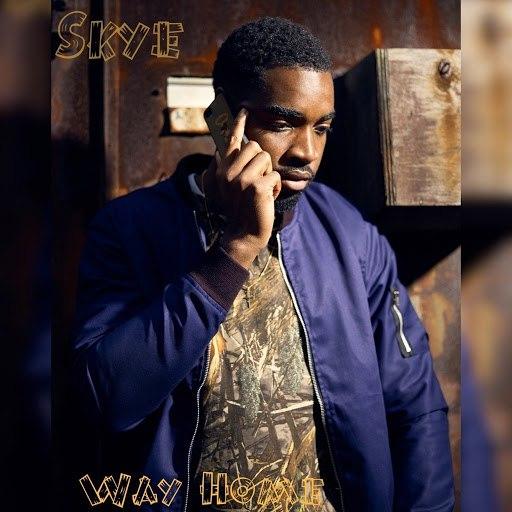Skye альбом Way Home