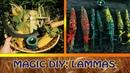 Magic 🔮 DIY Ламмас Лугнасад Кукла из кукурузных листьев и травяные саше палочки