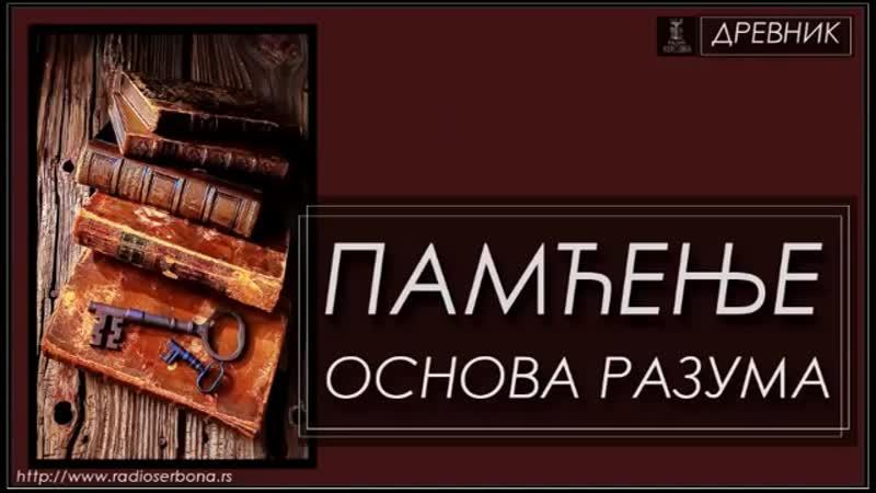 ДРЕВНИК бр.88 - ПАМЋЕЊЕ ОСНОВА РАЗУМА