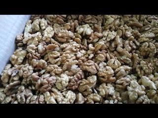 Грецкий орех - новый урожай | Белкины запасы | Тамбов