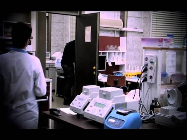 Наномедицина и видовой предел человека