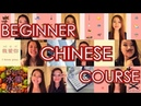 Learn Chinese Beginner Chinese Course – 25 Chinese Lessons in 3 Hours Learn Chinese with Yi Zhao