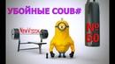 Убойные coub №60 - 1000 Отборная подборка /приколы/ржака до слез/умора