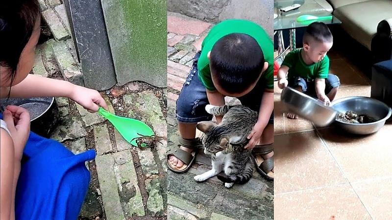 Em Cò mải chơi với gà, chơi với mèo rồi tranh công bắt cua của Gia Linh