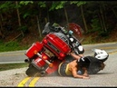 EPIC Harley Davidson Moments - WIN and FAIL 💎 Funny Motorcycles