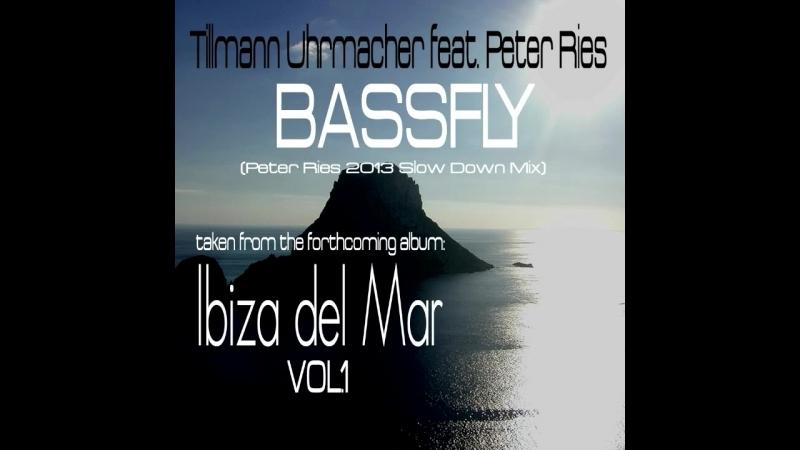 Tillmann Uhrmacher feat. Peter Ries - Bassfly (Peter Ries 2013 Slow Down Mix)