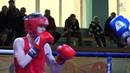 Найпрестижніші змагання з боксу у Білій церкві 🥊🥊🥊