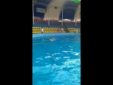 Плавание с дельфинами. Света. 2018
