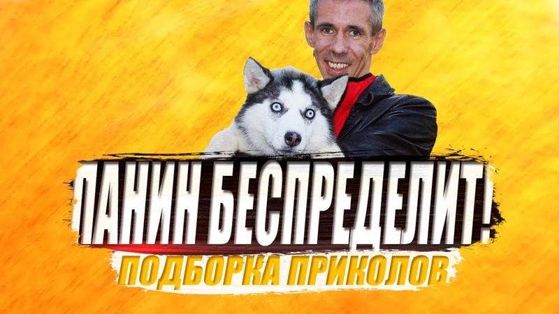 ПАНИН ПРИСУНУЛ СВОЕЙ СОБАКЕ ПАЛЕЦ подборка фото приколов