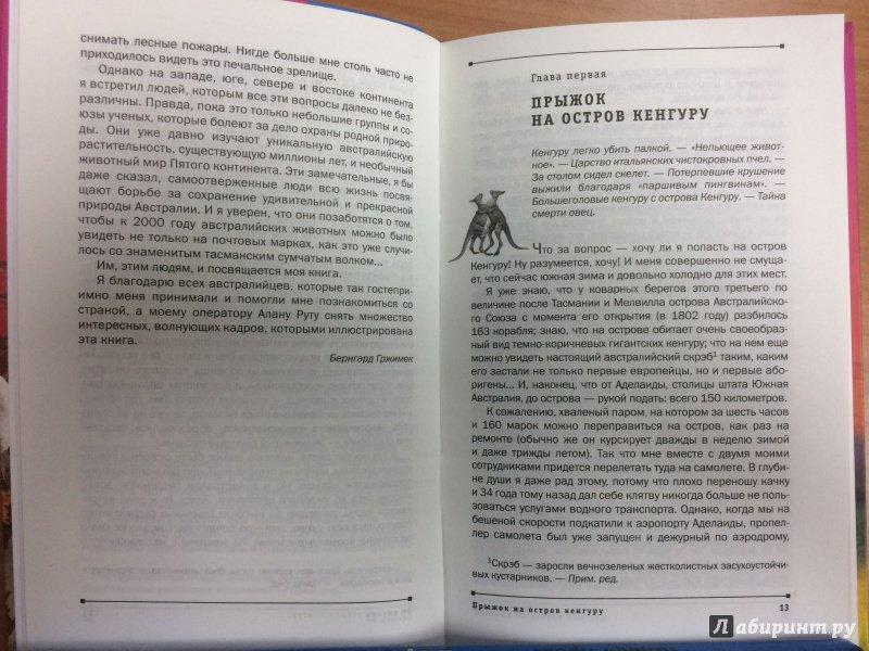 Реферат чтение лучшее учение 2458