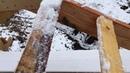 Стропильная система - как построит каркасный дом 10 из ...