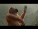 Смешное видео, Обезьяна танцует, Прикол.mp4