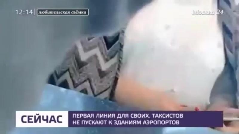 Таксистов не пускают к зданиям аэропортов - Москва 24