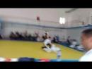 Мой чемпион, занял первое место 🥇 в соревнованиях в Казахстане 🇰🇿