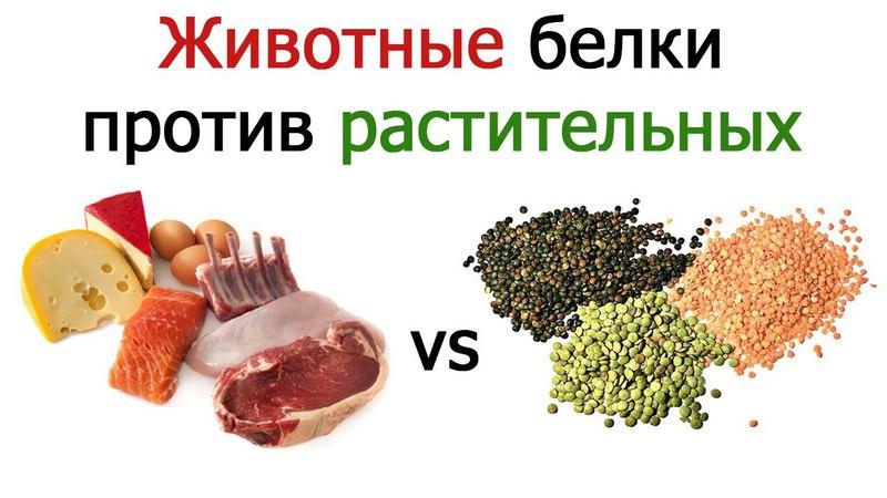 Животные против растительных белков для набора мышечной массы - Vegan Gains (русский перевод)