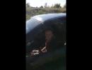 Video-626bd070fbfb4f2b6245831a44bd85ce-V.mp4