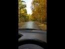 красивая дорога в осень