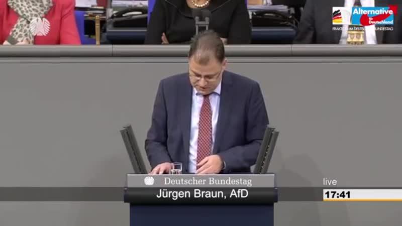 Die islamische Welt arbeitet faktisch an der Abschaffung der Menschenrechte- - Jürgen Braun - AfD