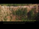 Шри Багаван, существует ли, свободная воля