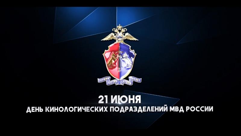 21 июня отмечают свой профессиональный праздник сотрудники кинологических подразделений МВД России.