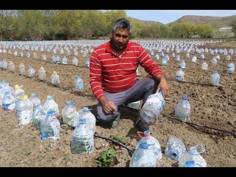Yozgatlı çiftçi hurdacıdan aldığı 3 bin pet şişeyle sera yaptı