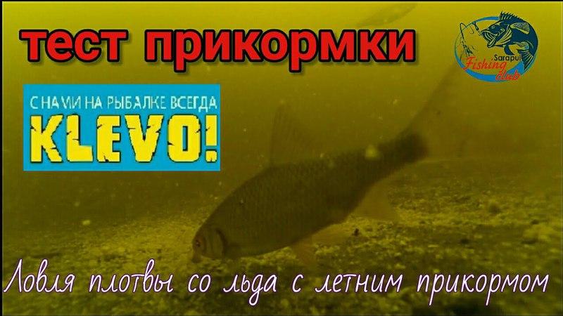Закрытие зимнего сезона. Река Кама. Подводные съёмкитест новой прикормки