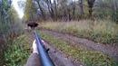 Охота на лося 2018