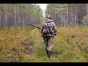 Приколы, неудачи и необычные случаи на охоте. Встреча с дикими животными часть 6