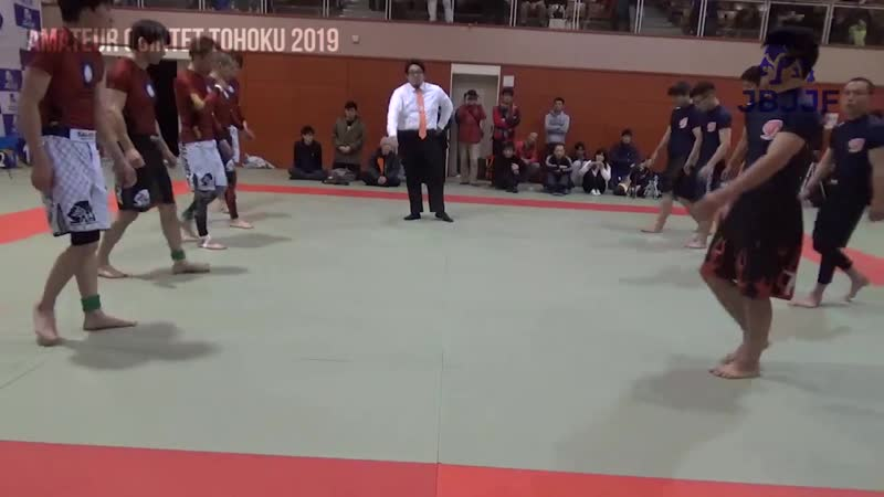 Amateur QUINTET Tohoku 2019第1マット bjf_grappling