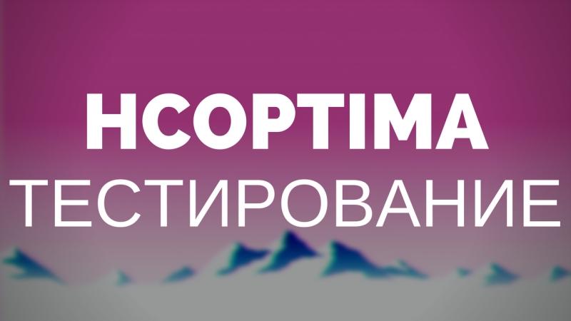 HCOptima - Тестирование прогрузки чанков после обработки плагином