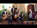 Flambée Montalbanaise - Jazz manouche avec accordéon pour mariages - Clément Reboul