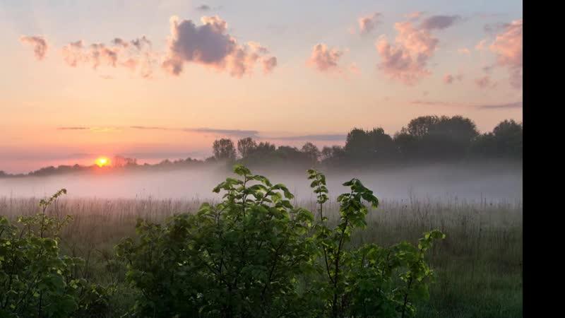 Над Устьей туман