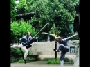 Great Kung Fu fighting