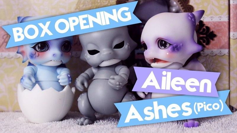 【BJD】Aileendoll Ashes Box Opening
