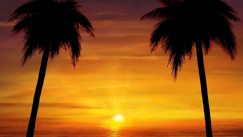 Peaceful music Instrumental music Relaxing beautiful music Tropical Sun By Tim Janis