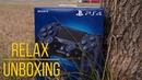 Dualshock 4 500 Million Limited Edition - Relax Unboxing