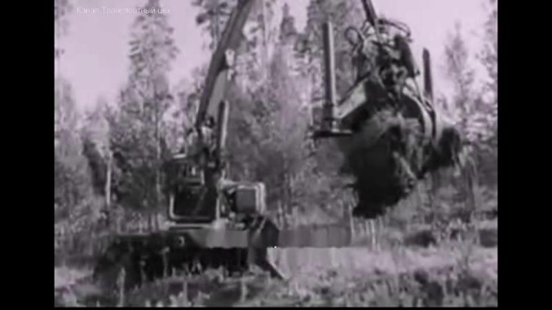 Когда уходят лесорубы. 1971 год