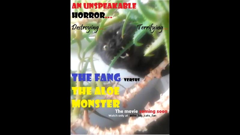 The fang vs The aloe monster / Зубёнок против Алоевого монстра