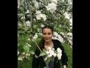 Май 2018, Коньково, Яблоневый Сад