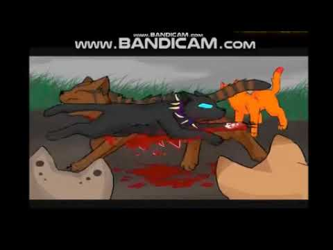 Коты воители Бич Flesh