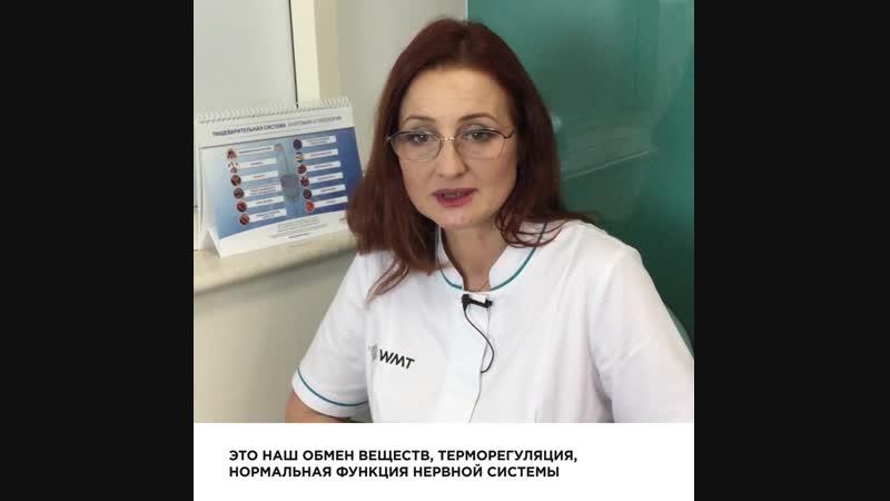 врач-эндокринолог клиники WMT - Орлова Елена Ивановна