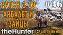 TheHunter call of the wild 36 🔫 - Патч 1.19 - Охота Из Арбалета - Охота На Зайцев - Новое Оружие!
