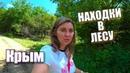 Крым. Что спрятано в ЛЕСУ, а мы нашли! Отдых в горном Крыму 2018. Дары леса, природа Крыма, Бельбек