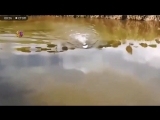 Будни рыболовецкого сейнера