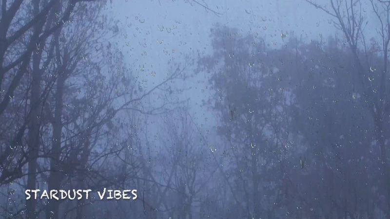 Rain Thunder Sounds in the Foggy Forest | Thunderstorm Sounds for Sleep, Insomnia Relaxing