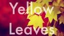 ნატო მეტონიძე და ნიკოლოზ რაჭველი - ყვითელი